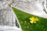 Wiosna, wiosenne przesilenie